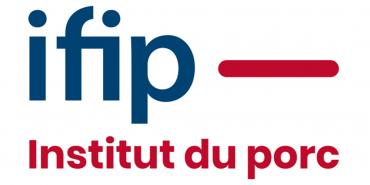 IFIP.png